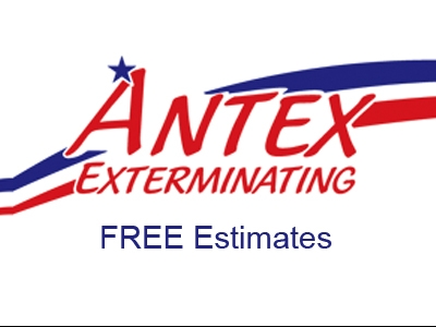 thumb_antex_logo